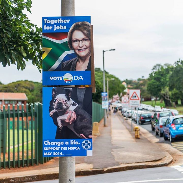 nspca-election-posters-2-da