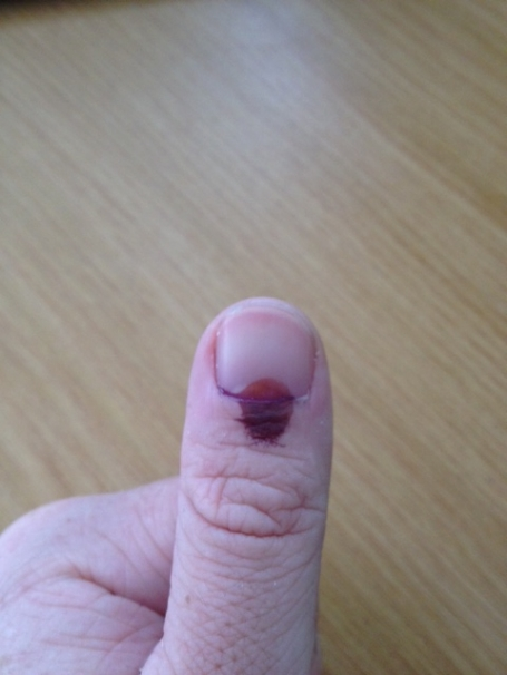 sa-voting-elections-thumb-mark