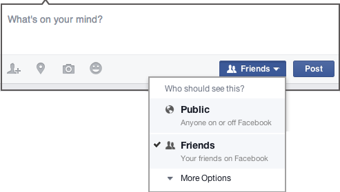 Facebook Audience Selector