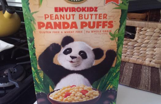panda41 findings