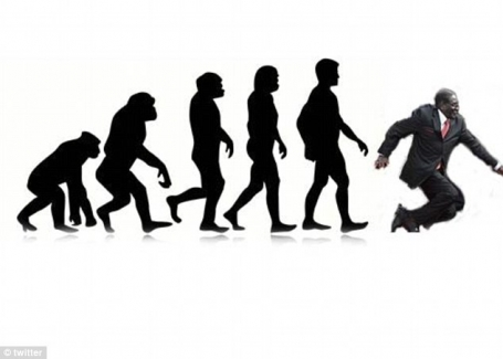 #Mugabefalls evolution meme