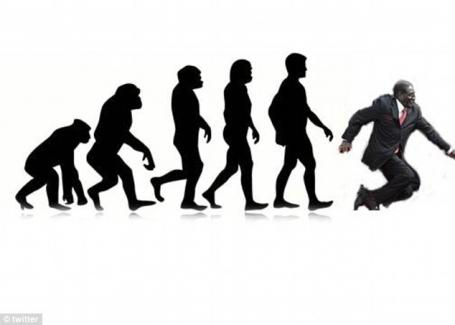 #Mugabefalls evolution meme