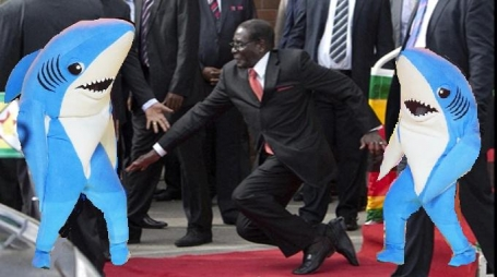 Mugabefalls left shark