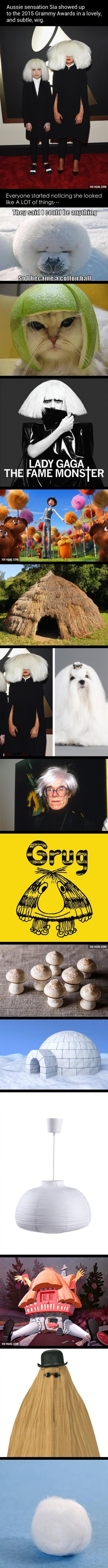 Sias Hair fail at the Grammys